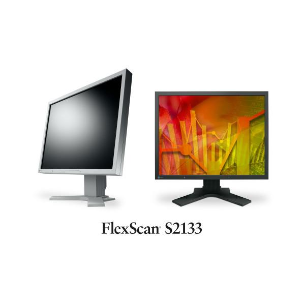 Ecran Eizo FlexScan S2133 - Occasion
