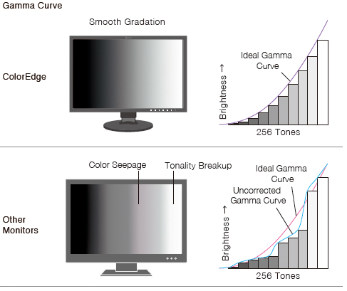 courbe gamma gris écran graphique eizo coloredge cs2420