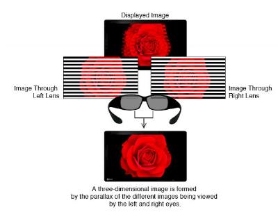 technologie 3D sans scintillement écran bloc opératoire eizo curator ex3220