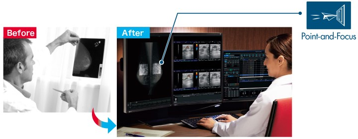 Fonction point & focus écran médical EIZO Radiforce RX560