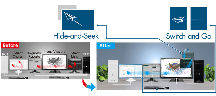 fonction hide and seek et switch and go EIZO Radiforce RX660